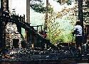 Burned Cabin